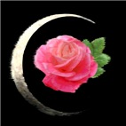 Moon and Rose
