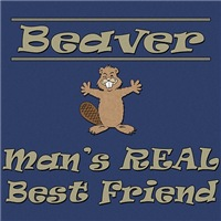 Beaver - Man's Real Best Friend