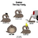 Asp Family Stuff