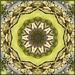Gumshoe Green Calliope