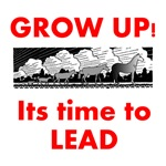 Grow Up - Its time to Lead