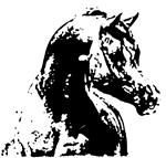AFTM Arabian Horse Head BW Stallion