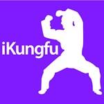 Karate, Mixed Martial Arts & Kung Fu iKung fu Silh