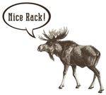 Nice Rack Moose