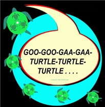 GAGA FOR SEA TURTLES