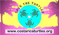 SAVE THE TURTLES BUMPER STICKERS