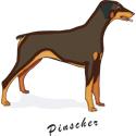 Pinscher T-shirt, Pinscher T-shirts