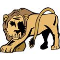 Stylized Lion T-shirt