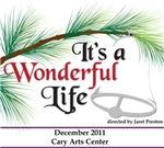 Wonderful Life 2011