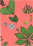 small Botanical (pink)