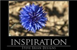 INSPIRATION13