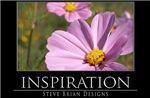 INSPIRATION16