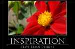 INSPIRATION28