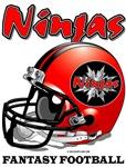 FFL Ninjas Helmet