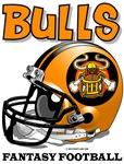 FFL Bulls Helmet