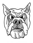 'Bulldog'