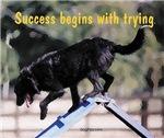 Success Dog Art