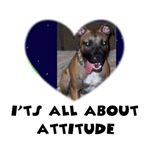IT'S ALL ABOUT ATTITUDE PIT BULL HEART