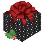 Polka Dot Christmas Gift