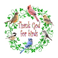 <b>THANK GOD FOR BIRDS</b>
