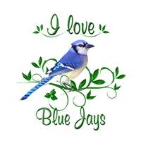 <b>I LOVE BLUE JAYS</b>