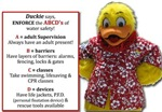 ABCD's of water safety