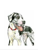 Please Click Here to See Various Great Dane Items.
