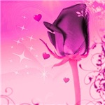 rose and love-more colors