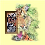 outcoming tiger