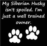 Well Trained Siberian Husky Owner