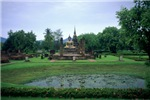 A Lotus Pool at Sukhothai