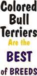 Colored Bull Terrier Best Breeds Design