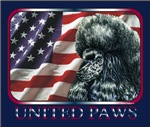 Poodle United Paws Patriotic US Flag Gift Products