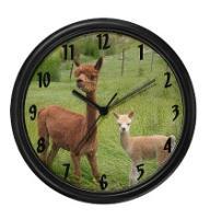 Alpaca Clocks