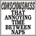 Consciousness. That annoying time between naps