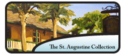 The St. Augustine Collection