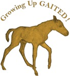 Growing Up Gaited!