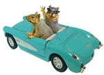 Squirrels in Car