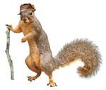 Squirrel Hat Stick
