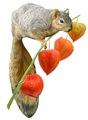 Squirrel with Japanese Lantern