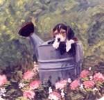 Beagle in Pail