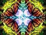 4 monarch butterflies