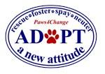 Adopt a New Attitude - Patriotic