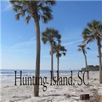 Hunting Island SC Palms