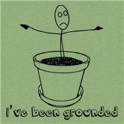 Been Grounded