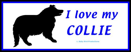 I LOVE MY DOG - COLLIE