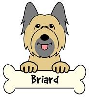 Personalized Briard