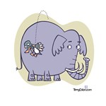 An Elephant and . . .