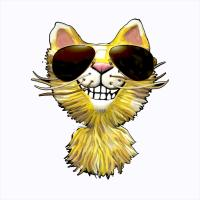 Yellow tiger Cat Cartoon<br>Wearing Sunglasses