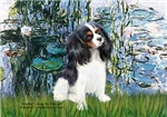 LILIES (#1)<br>& Cavalier King Charles Spaniel